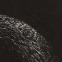 Sophie Courtant-gravure-chair_de_lune