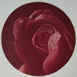 rose rouge pour mes clients